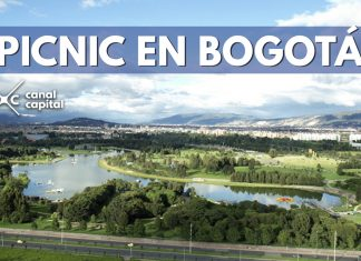 picnic en Bogotá