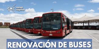 renovación de buses TransMilenio