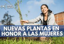 plantación mujeres