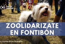 Brigada de salud animal en Fontibón