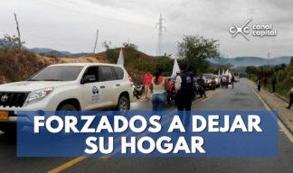 más de 16 mil desplazados en norte de santander