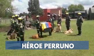 Policía rinde homenaje a perro rescatista