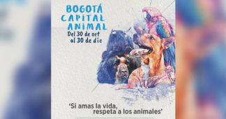 Participe de Bogotá Capital Animal hasta el 30 de diciembre