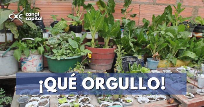 el regalo, el barrio más limpio de Latinoamérica