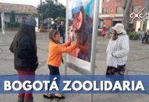 Exposición fotográfica de animales