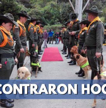 perros jubilados de la Policía