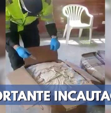 Policía incautó 31 kilos de marihuana en El Dorado