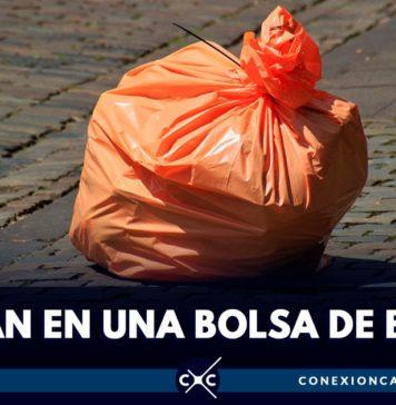animales muertos en bolsa de basura