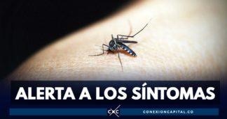 síntomas dengue