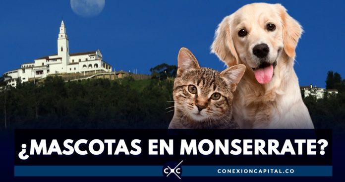 mascotas Monserrate