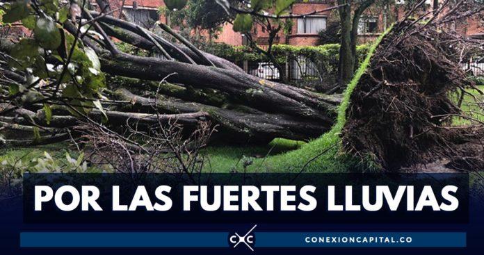 árboles caídos Bogotá