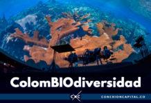 La naturaleza se toma el Planetario de Bogotá