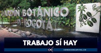 trabajo en el jardín botánico de Bogotá