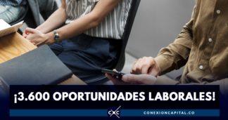 3.600 oportunidades laborales