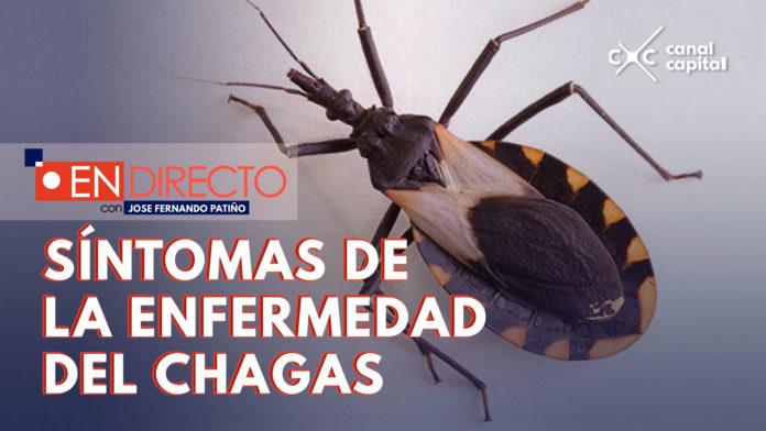 ¿Qué es la enfermedad de Chagas?