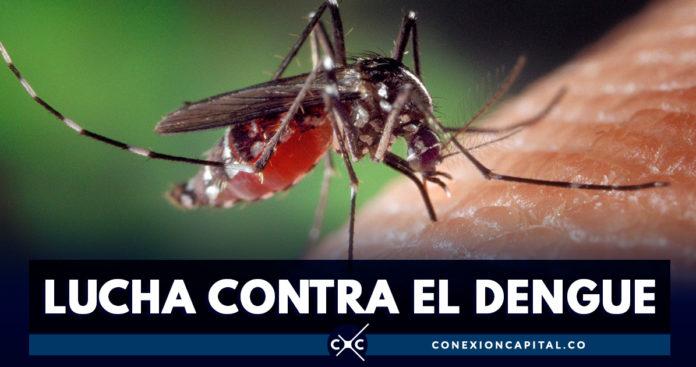 Científicos chinos vuelven infértiles a mosquitos que transmiten dengue