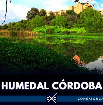 Solucionarán pleito por invasión en el humedal Córdoba