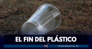 Joven científico encuentra el reemplazo de los vasos de plástico