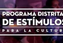 Programa de IDARTES