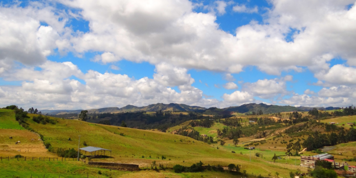 Ruralidad Cundinarmarca..
