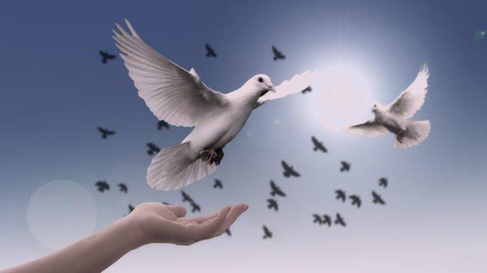 Semana por la paz y el postconflicto