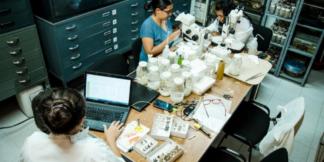 Recursos en ciencia y tecnología para Instituciones de Educación Superior Públicas.