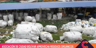 residuos orgánicos.