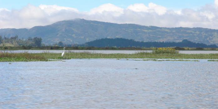 Laguna Fúneque.