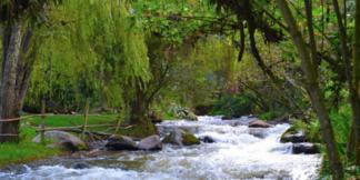 Río Neusa